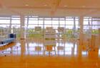 【11/2~30】パネル展「戸田橋緑地の野草写真展」