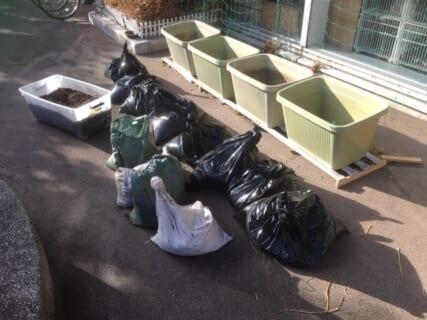 グリーンカーテン2020#33土をリサイクル