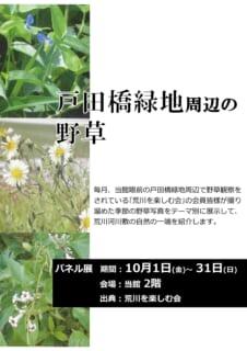 【10/1~31】パネル展<br>「荒川戸田橋緑地周辺の野草写真展」